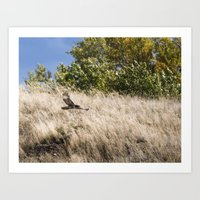 hunting Art Prints featuring Hunting by Bryan Simons