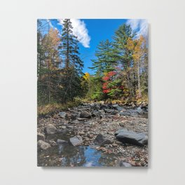 Fall on the Carrabassett (4) Metal Print