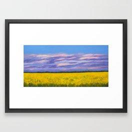 Canola Fields at Dusk Framed Art Print