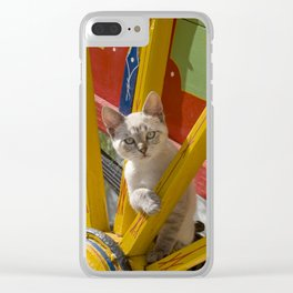 kitten on an Algarve cart, Portugal Clear iPhone Case