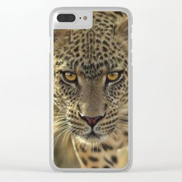 Leopard - On the Prowl Clear iPhone Case