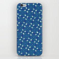 Icebergs iPhone & iPod Skin