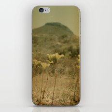dry heat iPhone & iPod Skin