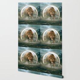 aegis | bear Wallpaper