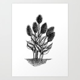 Furry Flowers Art Print
