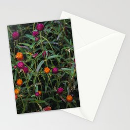 Colorful Cardoons Stationery Cards