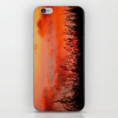 Rainbow Sundown iPhone & iPod Skin