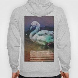 Midnight Swan Hoody
