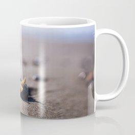 A Tiny Star Coffee Mug
