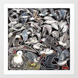 Sea gulls for bird lovers Art Print