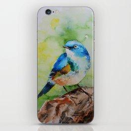 Colorful birdie iPhone Skin