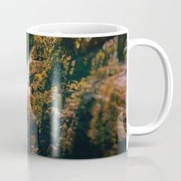 Stream of Light Coffee Mug