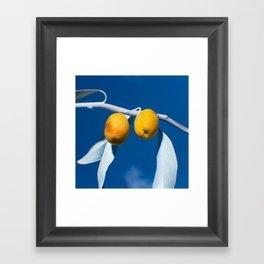 Olives Framed Art Print