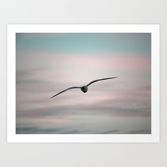 Twilight Seagull Art Print