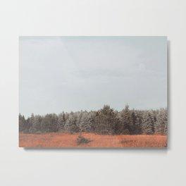 Northern Michigan Trees Metal Print