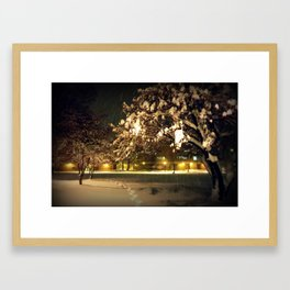 Snowy Path Framed Art Print