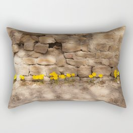 The Unique monyment of culture and art Rectangular Pillow