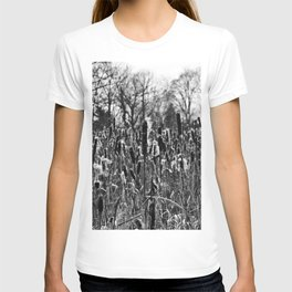 Winter Poetry of the Grasses T-shirt