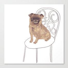Pug on a chair Canvas Print