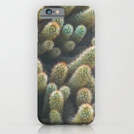 Prickly Pickles iPhone Case