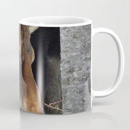 Moose eating saplings Coffee Mug