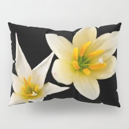 White flowers with black Pillow Sham