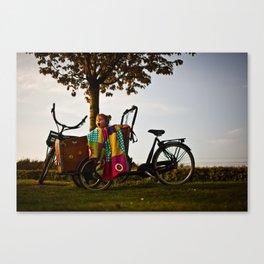 Sunset Roar Canvas Print