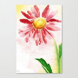 single flower watrercolor Canvas Print