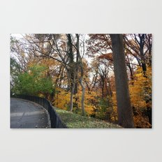 Fall adventure Canvas Print
