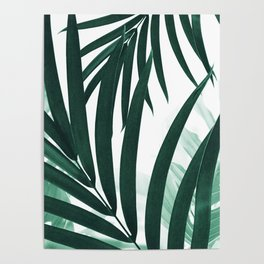 Palm & Monstera Leaves Mix #2 #foliage #decor #art #society6 Poster