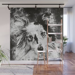 border collie dog 5 portrait wsbw Wall Mural