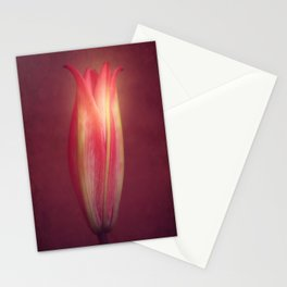 Lily Wih Mulled Wine Tones Stationery Cards