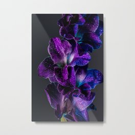 Blue and Purple  Metal Print