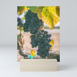 Ripen Mini Art Print