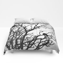 Rustic Crows Black Birds Tree Modern Cottage Chic Art A465B Comforters