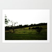 Sheep Farm Landscape Art Print