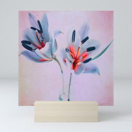 The flowers of my world Mini Art Print