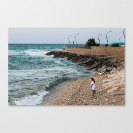Sea gaze Canvas Print