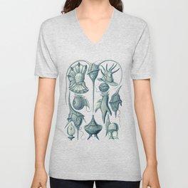 Ernst Haeckel Peridinea Plankton Unisex V-Neck