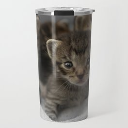 Photo of a group of cuddly kittens Travel Mug