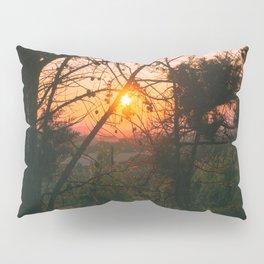 Sun Captured by Trees Pillow Sham
