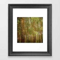 July forest Framed Art Print