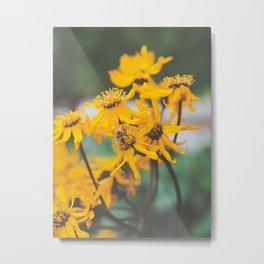 Bee Botanical  Metal Print