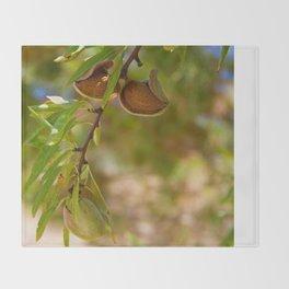 Almond Harvest - Ripe Almonds On A Tree Branch Throw Blanket