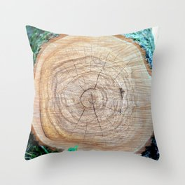 Log with annual rings on a slice. Throw Pillow