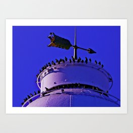 Lighthouse perch Art Print