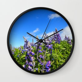 Summer Lupine in Iceland Wall Clock