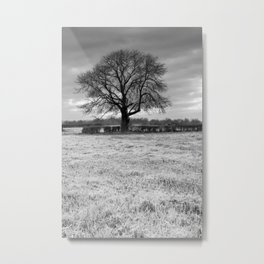 Oak Tree Silhouette Metal Print