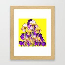 Purple Yellow & Purple Iris Flowers Framed Art Print