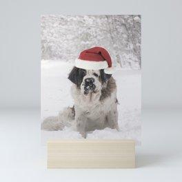 Festive Saint bernard dog with santa hat Mini Art Print